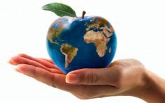 Entro 2050 il mondo deve produrre il 60% di cibo in più