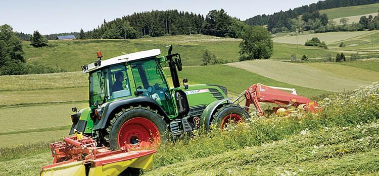 Serpillo: l'agricoltura come amore. Così nasce il futuro