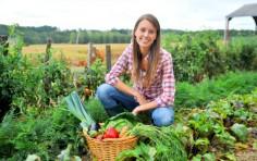 Incentivi all'imprenditoria in rosa in agricoltura a tasso zero