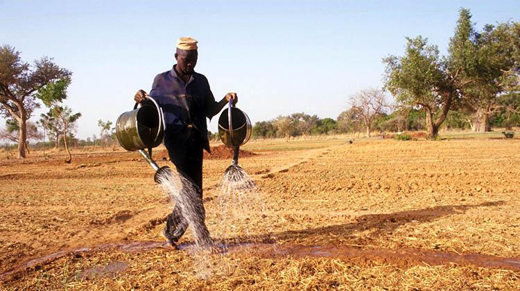 agricoltura_03-03-16