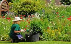 Legge di Bilancio 2018: detrazione fiscale per giardini e terrazzi privati