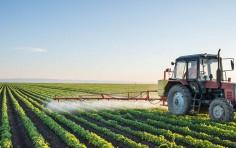 Gli aiuti per l-agricoltura previsti nel Decreto Rilancio