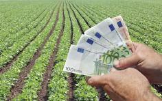 Fondo perduto: agli agricoli con regime agevolato spetta a certe condizioni